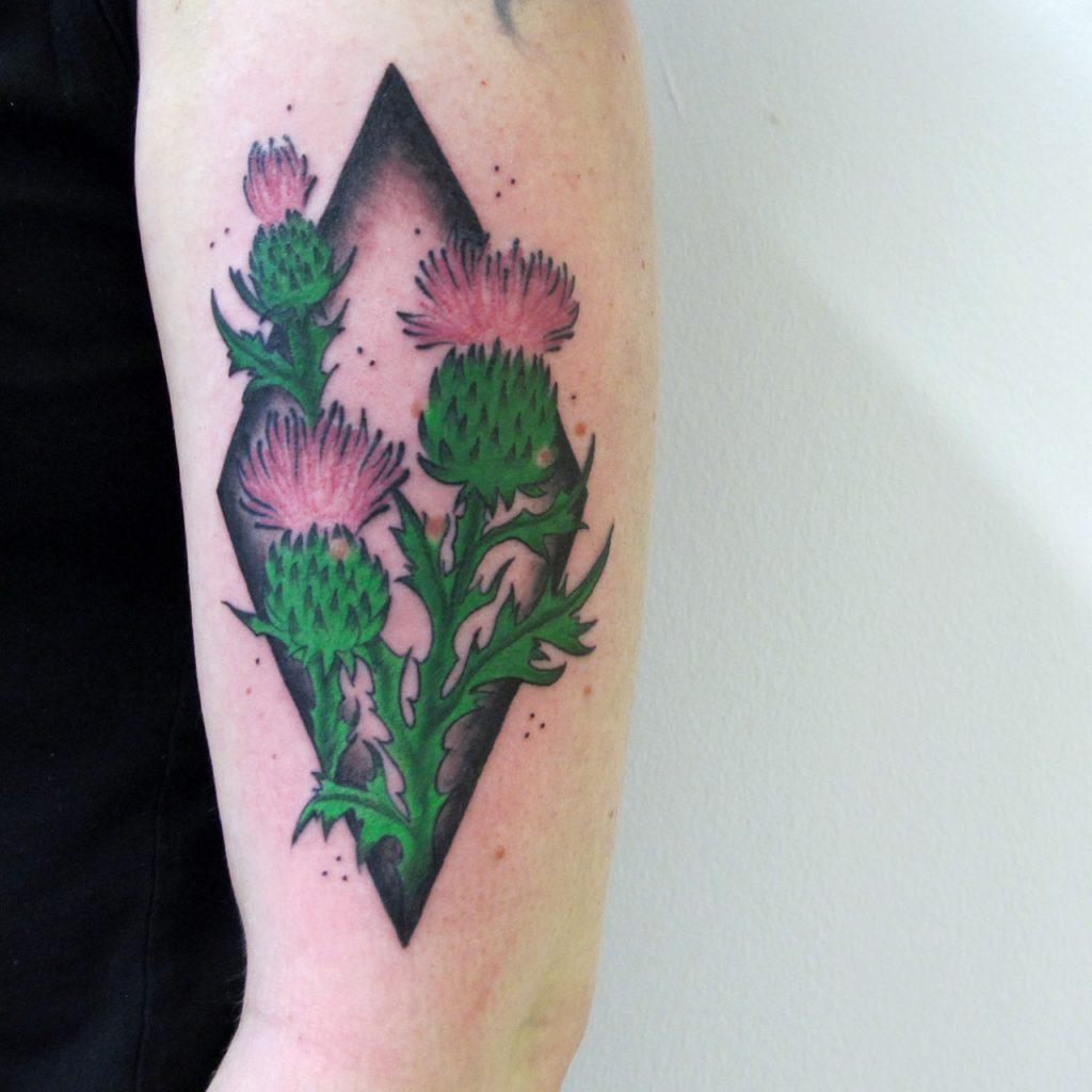 bunte, botanische Distel Tätowierung