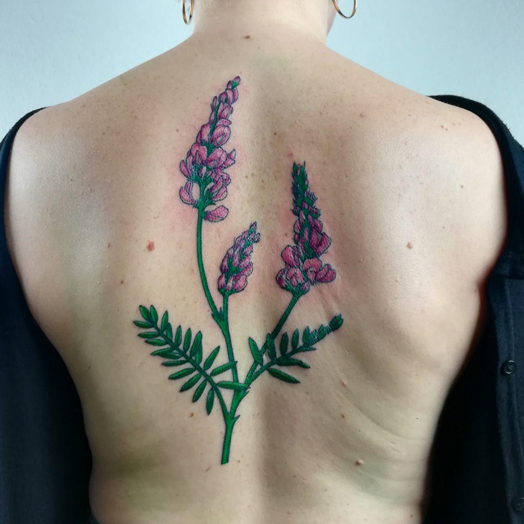 large colorful botanical esparcet tattoo on back
