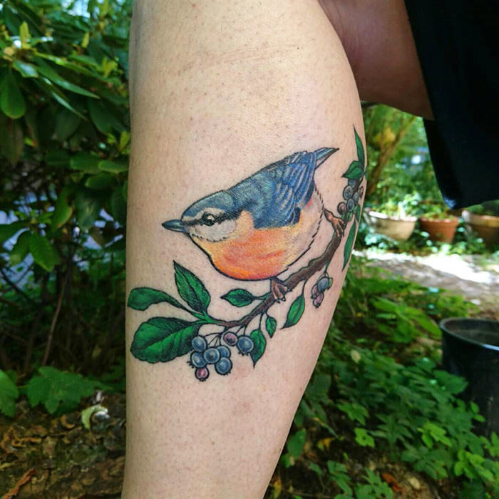 colorful nuthatch tattoo, healed
