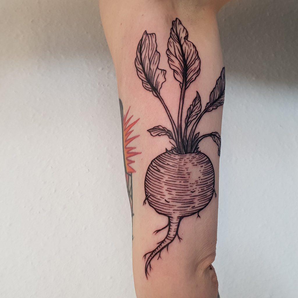 beetrrot tattoo in woodcuttattoo and lineworktattoo style, botanical tattoo
